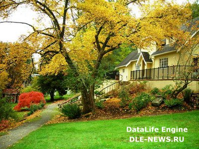 Осенняя подготовка дачного дома к продаже.