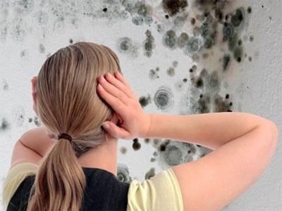 Плесень на стенах: предупредить и обезвредить