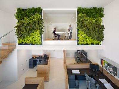 Пять правил «зеленого» офиса