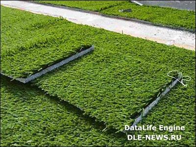 Синтетический газон как достойная альтернатива травяному покрову