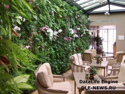 Вертикальные сады как эффектный прием ландшафтного декорирования