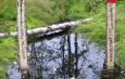 Что такое Инженерно-экологические изыскания?