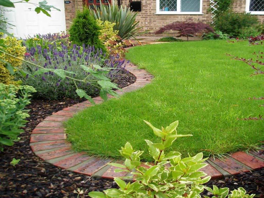 Обыкновенный газон в саду