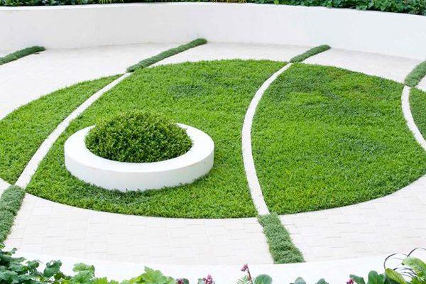 Преимущества обыкновенного типа газона